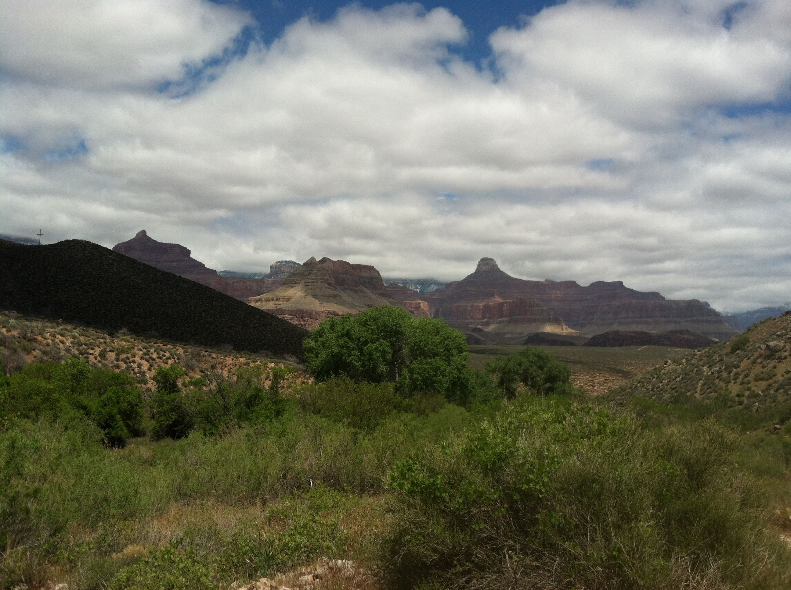 a view of the Grand Canyon I took from a field from East Tonto trail to West Tonto trail