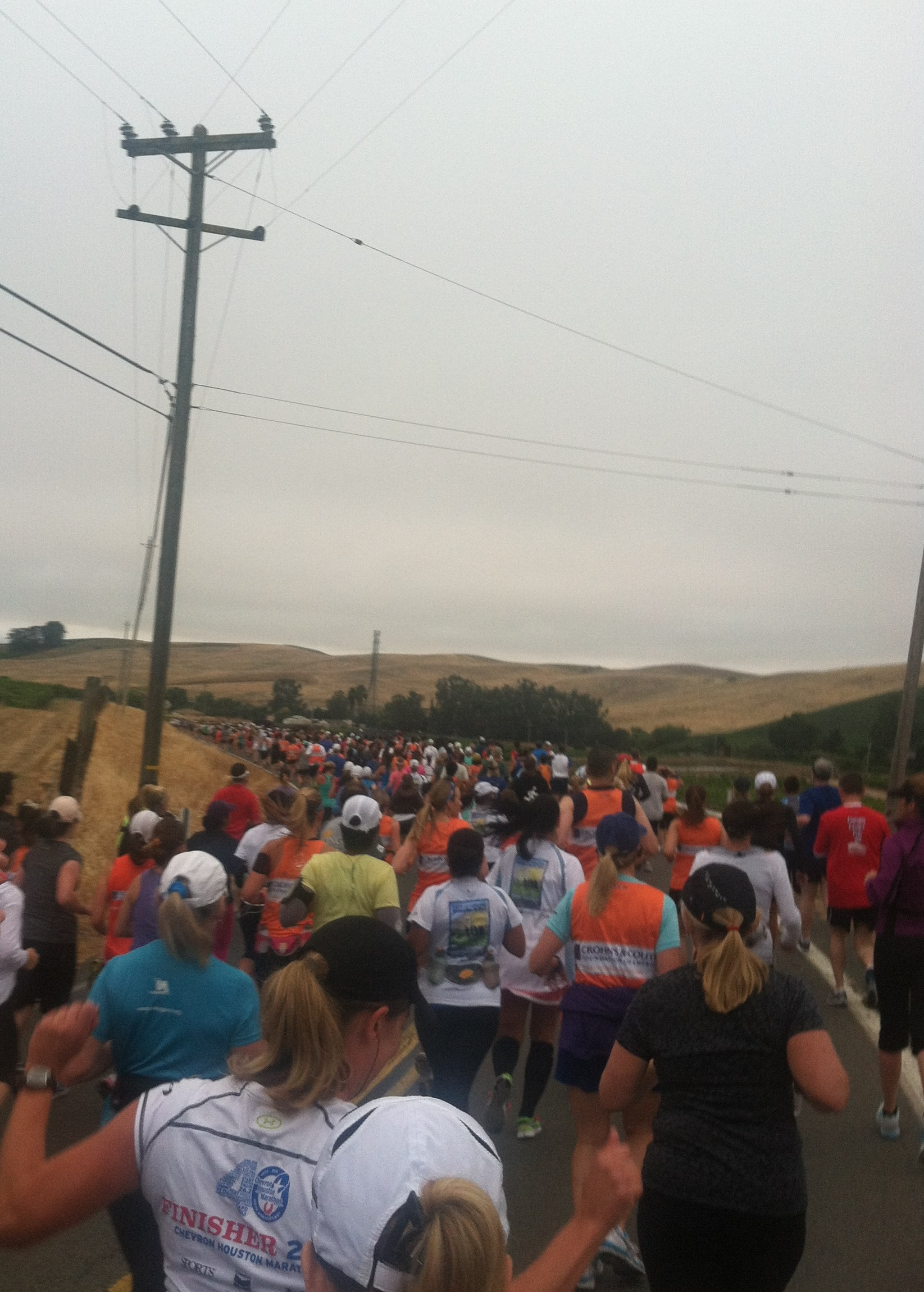 people running the Napa 2 Sonoma Wine Country half marathon 2012