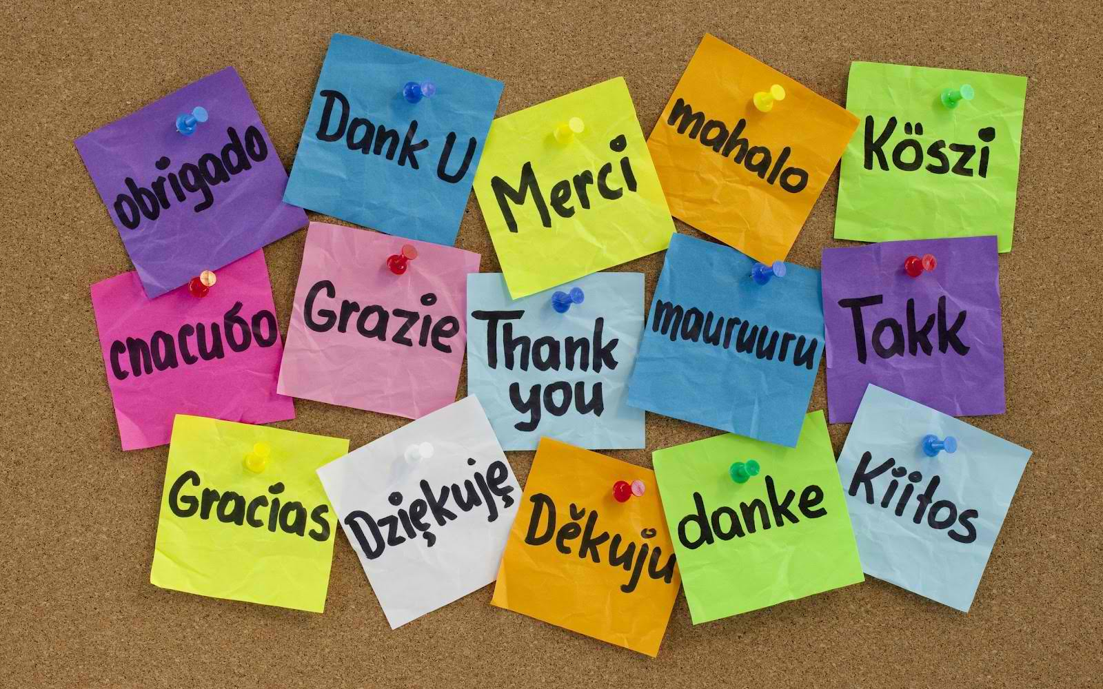 post it notes with thank you written in different languages