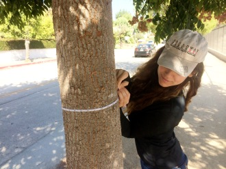 Aurora De Lucia looking down at a tape measure on a tree while tree mapping
